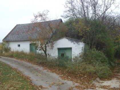 Kellergasse Ollersdorf