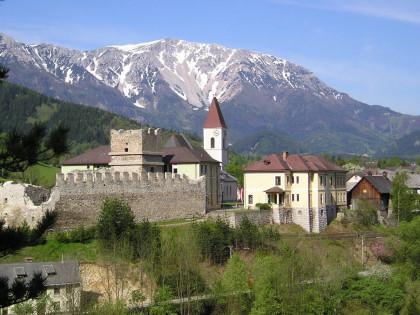 Burgruine Puchberg