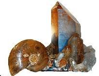 Mineralien - & Fossilienverein Ybbs an der Donau