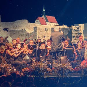 Wiener Neustädter Instrumentalisten
