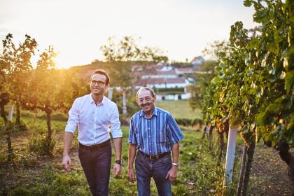 Weinschaun beim Winzer im Weingut Kittenberger