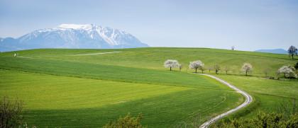 Von der Buckligen Welt zum Schneeberg