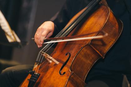 Haydn Geburtshaus Konzert 2