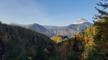 Gemeindealpe, Dürrenstein u. Ötscher - unsere Begleiter