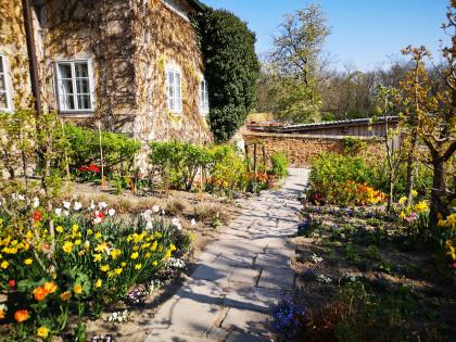 Naschgarten im Gutshof von Schloss Hof
