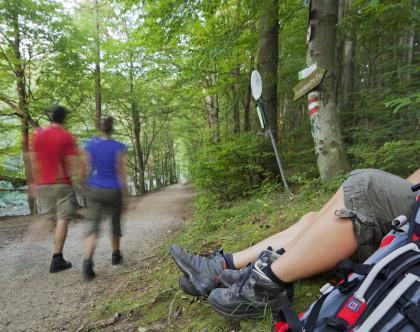 Wienerwald Wanderung