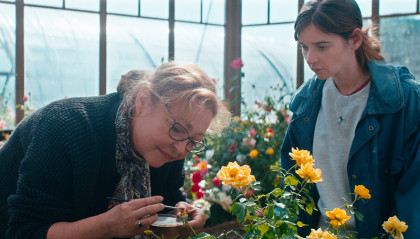 Der Rosengarten der Madame Vernet