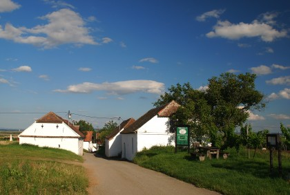 Kellergasse Pillersdorf