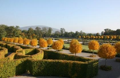 Herbstgartentage auf Schloss Hof