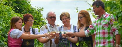 Weinbau und Heuriger Angerhof