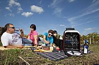 Familie Landauer-Gisperg beim Picknick