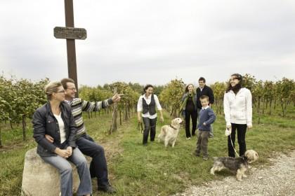 Weingut Holzschuh