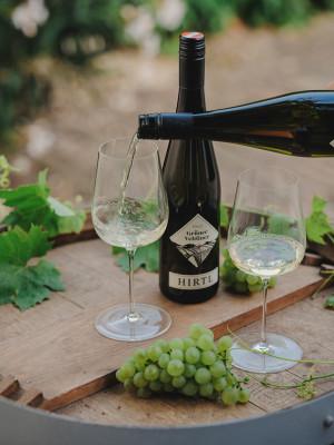 Weine genießen ... im Weingut Hirtl