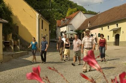 Wanderung durch die längste Kellergasse Österreichs