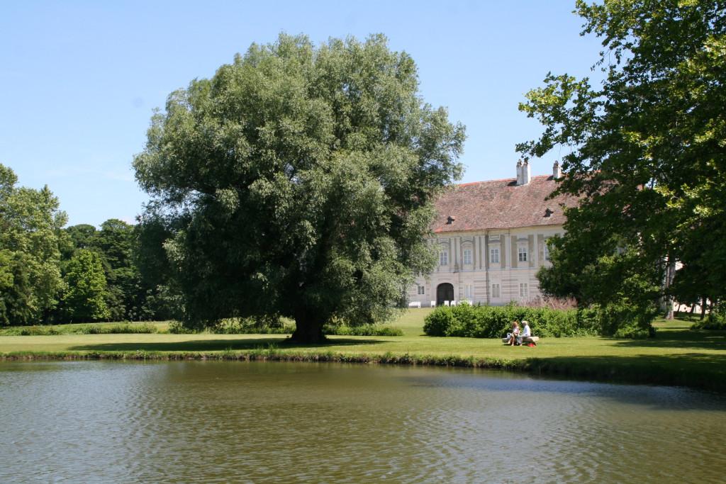 17. Haydn-Tage Schloss Rohrau