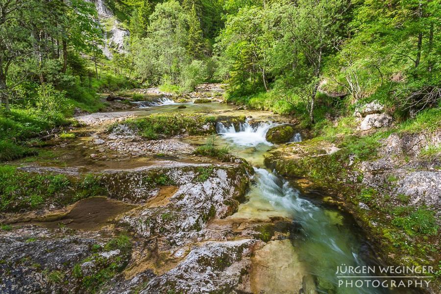 1 Tag Naturerlebnis – Mariazellerbahn und Naturerlebnis im Naturpark