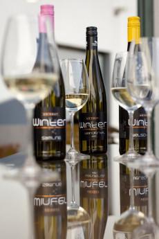 Weingut und Heuriger Winter