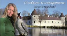 Falknerin vorm Schloss_Titelbild Greifvogelzentrum