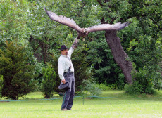 Falkner mit Mönchsgeier