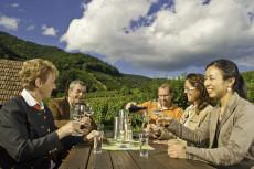 Weingenuss in den Weingärten