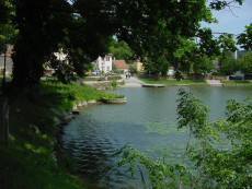 Teich Sitzenberg