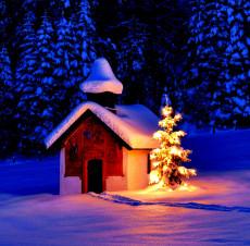 Zauber einer Weihnacht