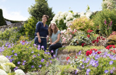 Erfrischend Blütenreich - Schaugärten in Niederösterreich