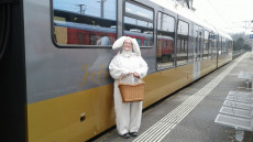 Osterhase in der Mariazellerbahn