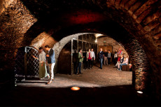 Schatzkammer: Historischer Flaschenkeller der Winzer Krems