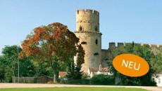 Laaer Burg