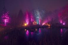 Illumina der Gärten