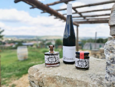 """""""Reben, Paradeiser & Co.""""  mitten im Weingarten am Aussichtsplatzerl des Weinguts Rosner."""