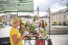 Genussmarkt im Herzen von Langenlois