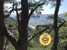 Wanderung mit Aussicht Weltkulturerbe Wachau