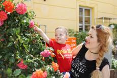 Garten Markttage auf Schloss Hof