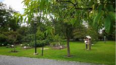 Alchemistenpark