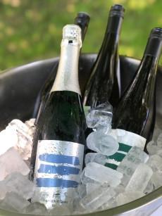 Weinschaun in der Weingärtnerei Lang