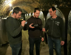 Weinschaun im Weingut Klinglhuber