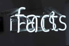 Cornelia König, fake facts, 2017