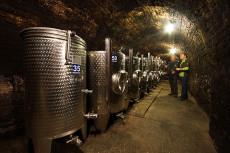 Der Weinkeller des Weinguts Wiesinger