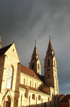 Dom Wr.Neustadt