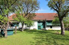 Der Garten der Vinothek und Weinbar Weinkontraste.