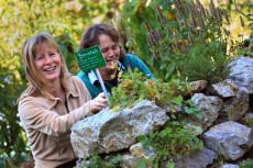 Steinschaler Naturgärten