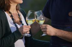 Wein & Kulinarik