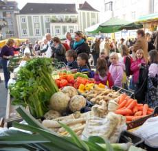 Wochenmarkt am Domplatz