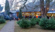 Im Langegger Hof findet ein Adventmarkt mit lokalen Produkten und Christbaumverkauf (Mondphasenschni