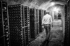 Spitzer Weinherbst 2021 - Das Archiv der Vinea Wachau
