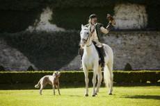 Falknerei zu Pferd an jedem ersten Wochenende im Monat und an jedem Feiertag