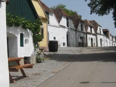 Kellergasse Mailberg