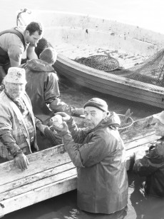 Provisor Conrad im Teich beim Abfischen